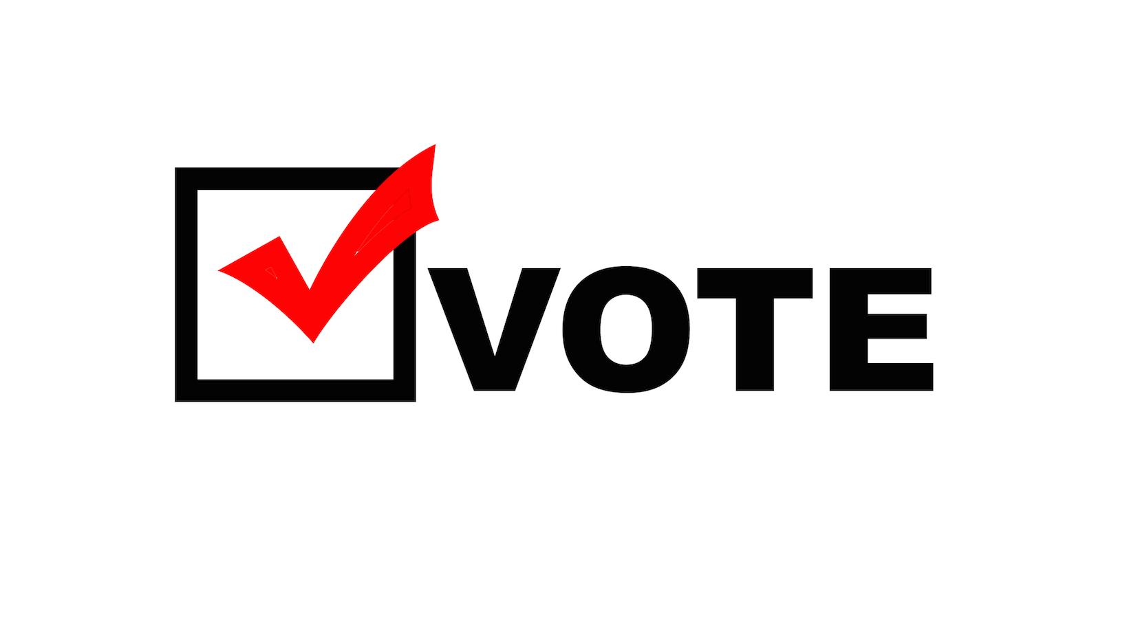 Vote in the November Elections